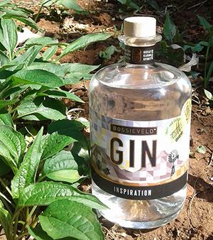 bv-gin-tuin-3